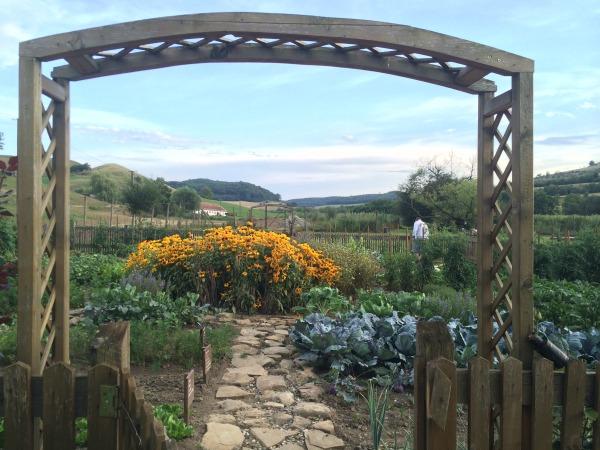 Romania veg garden sml