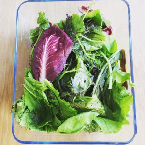salad in glass lrge